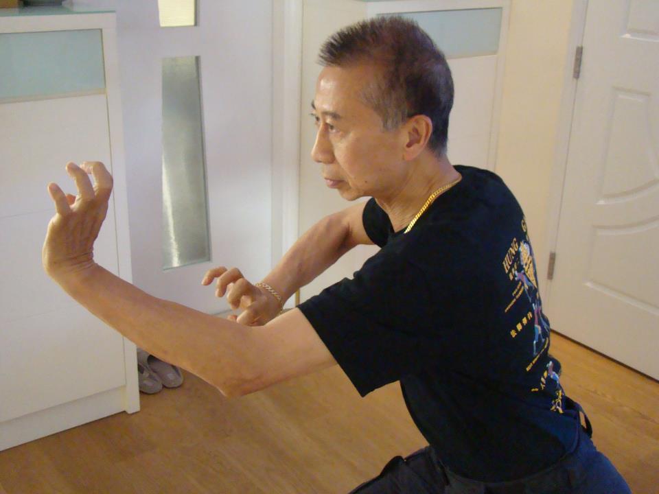 Hung Gar Kuen Sifu Carl S Northern Southern Combined Fist